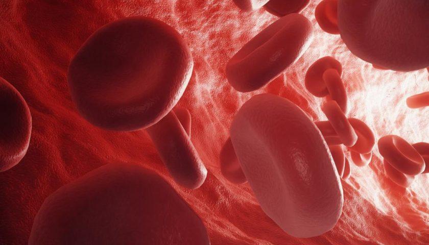 Aloe Vera and Cancer Cure